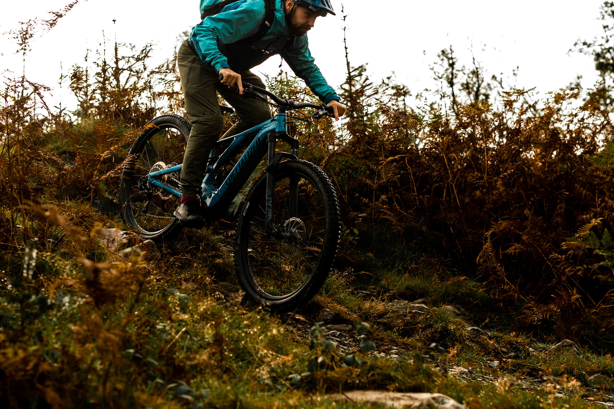Grizedale Forest Biking the Lake District - The Langdale Hotel & Spa